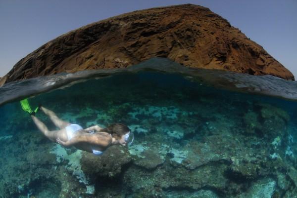 sport-Dajving-tenerife-kanarskie-ostrova