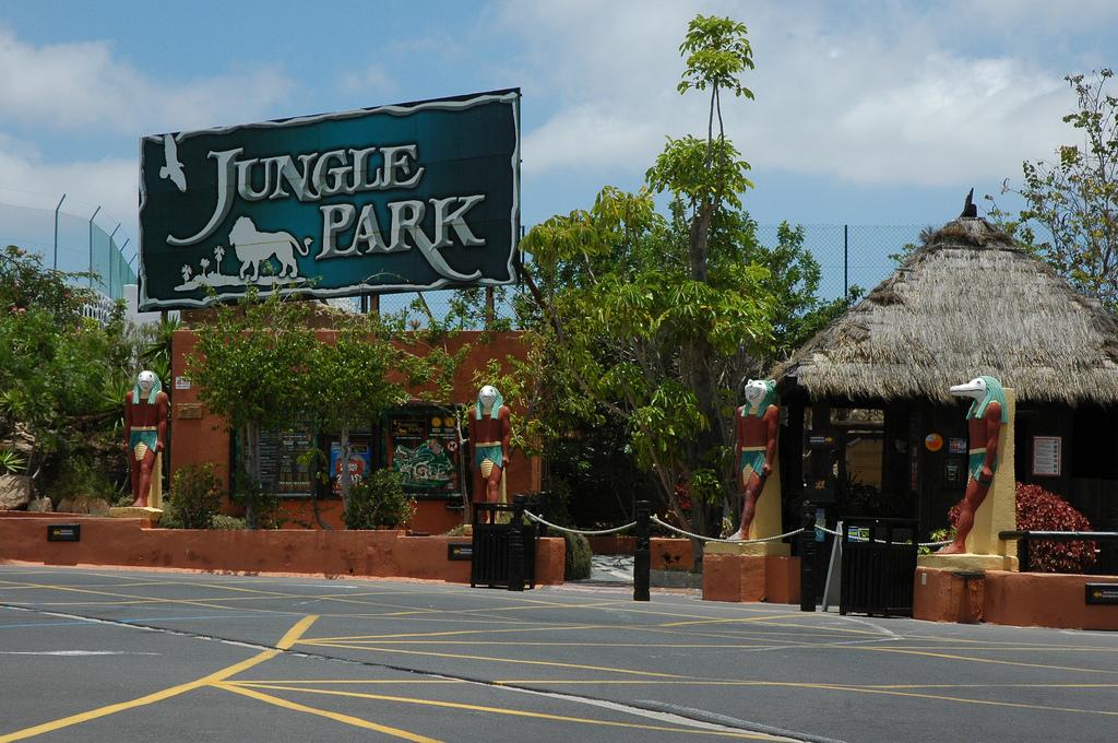 Tematicheskie-parki-Tenerife.-Park-dzhungle