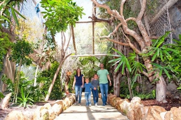 Tematicheskie-parki-Tenerife.-Park-dzhunglej