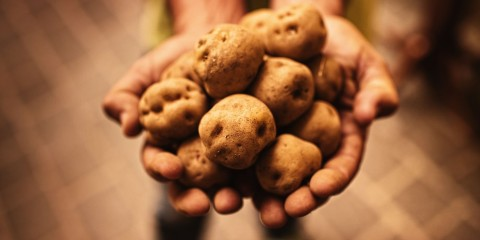 kuhnya-eda-gastronomiya-kartoshka-kartofel-krasivy-j-Tenerife-Kanarskie-ostrova