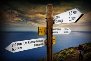 CHem-zanyat-sya-na-Tenerife-Unikal-ny-e-vpechatleniya-II